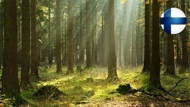 Det finska bidraget till framgången med träbearbetningsprodukter